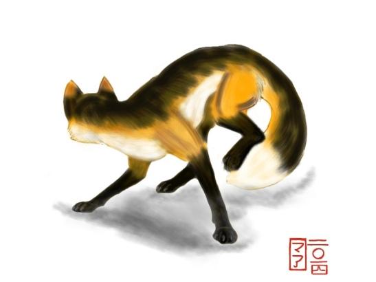 fox shintaro