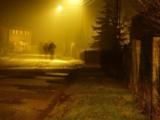night-237895_1920